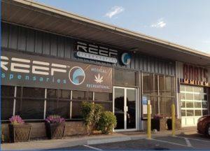 Reef_Sparks